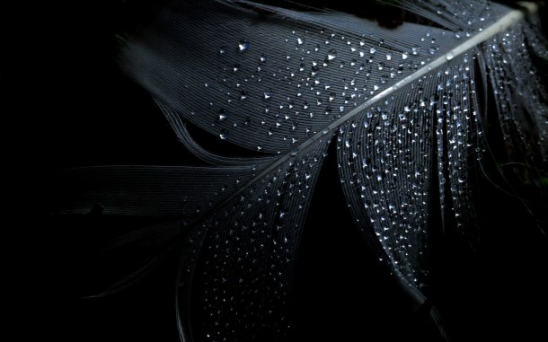 black wallpapers 20