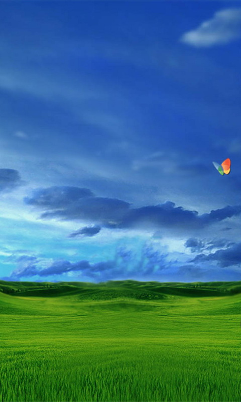 windows-phone-480x800-wallpaper-2173
