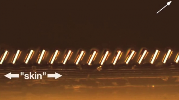 Magnetic microhair from MIT2