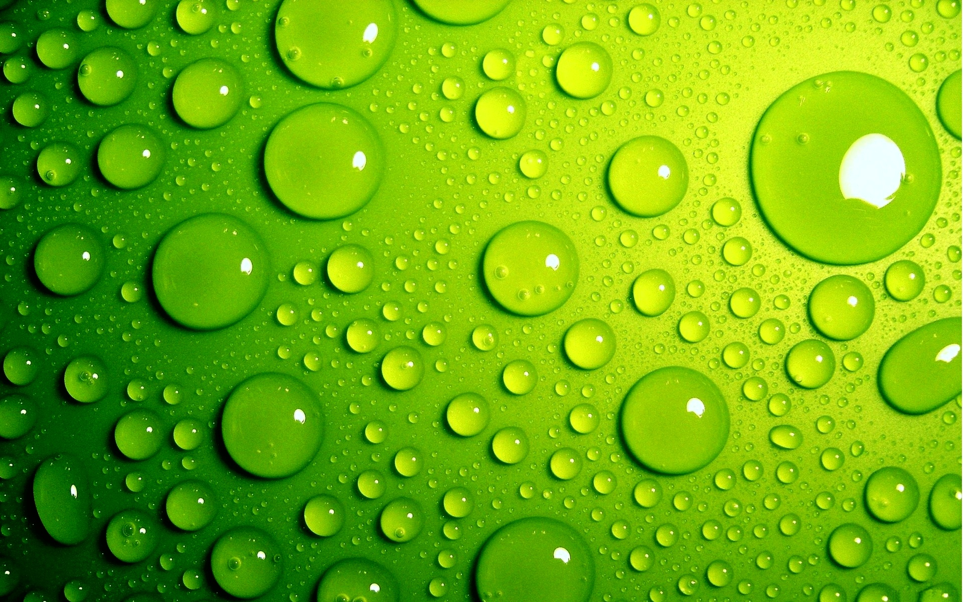 Green Wallpaper Green Wallpaper