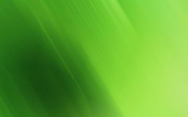 Green Wallpaper 7