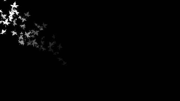 black background 5