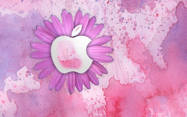 pink wallpaper 1