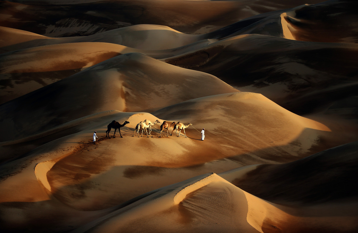 Google Maps Liwa Desert in Abu Dhabi Using Camels