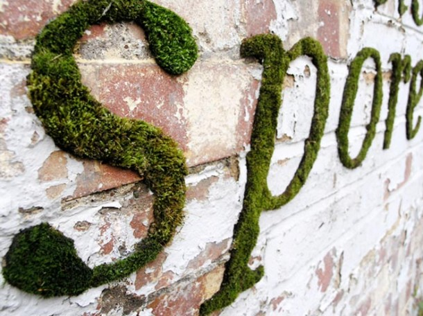 Moss Graffiti – How to Do It