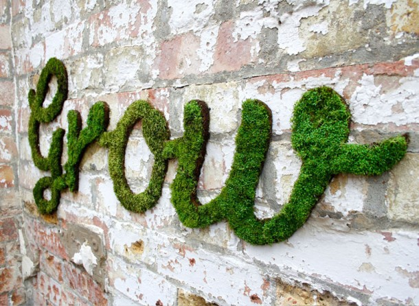 Moss Graffiti – How to Do It5