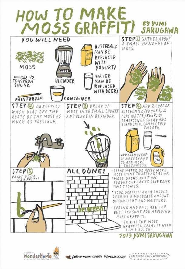 Moss Graffiti – How to Do It2