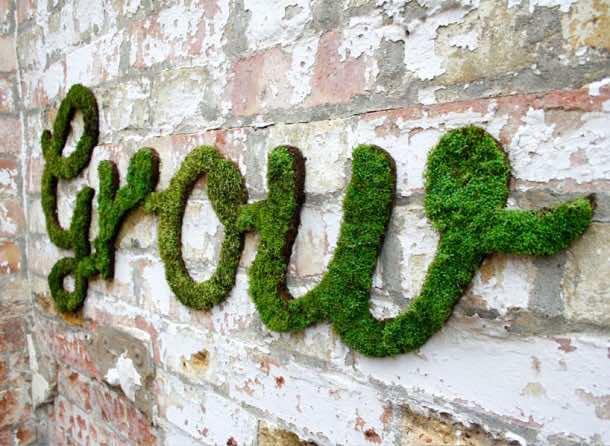 Moss Graffiti – How to Do It5