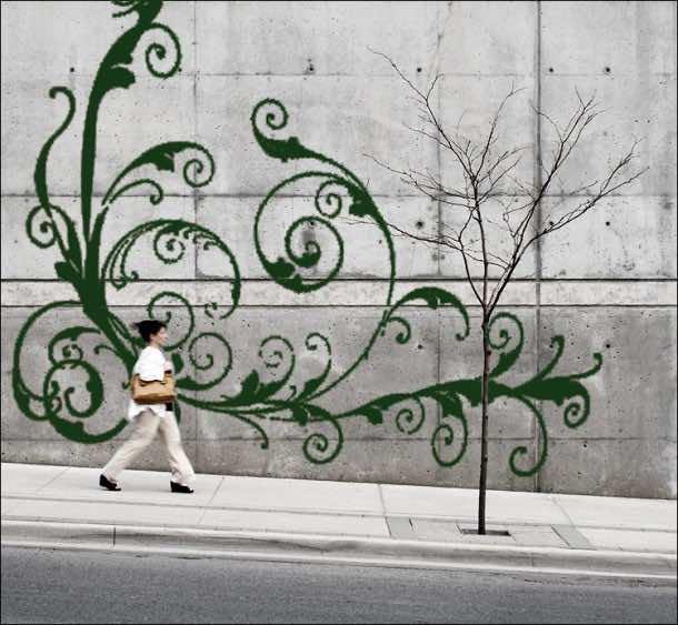 Moss Graffiti – How to Do It6