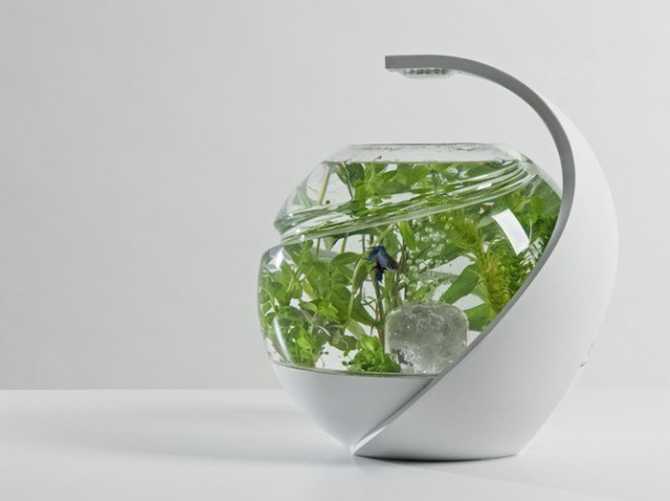 Smart Fish Tank - Avo