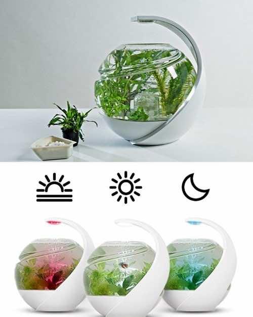Smart Fish Tank - Avo4