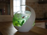 Smart Fish Tank - Avo5