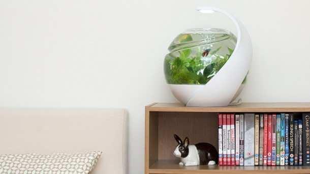 Smart Fish Tank - Avo6