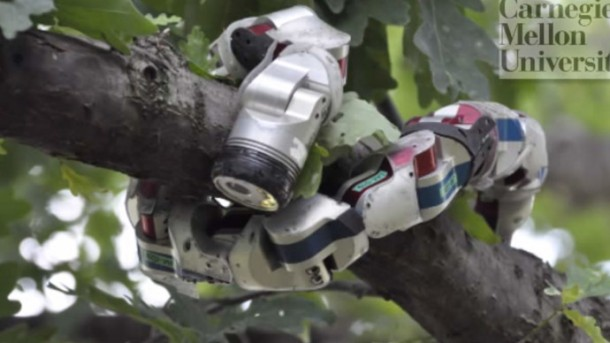 Snake Robot Learns a Trick from Sidewinder Rattlesnake5