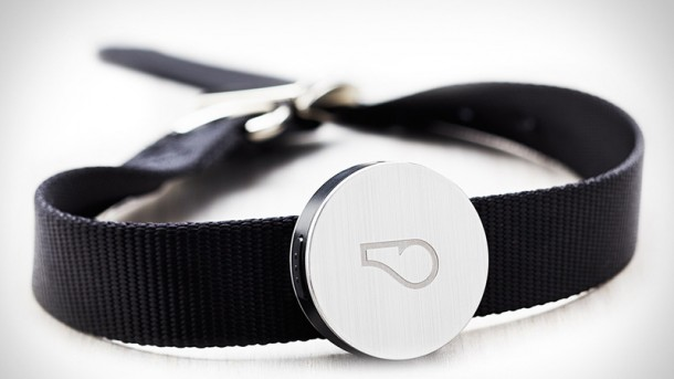 Whistle Activity Monitor – The fitness tracker for your pets