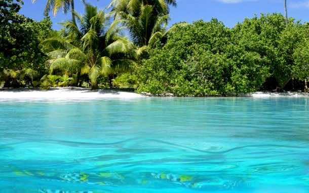 Clear beach water
