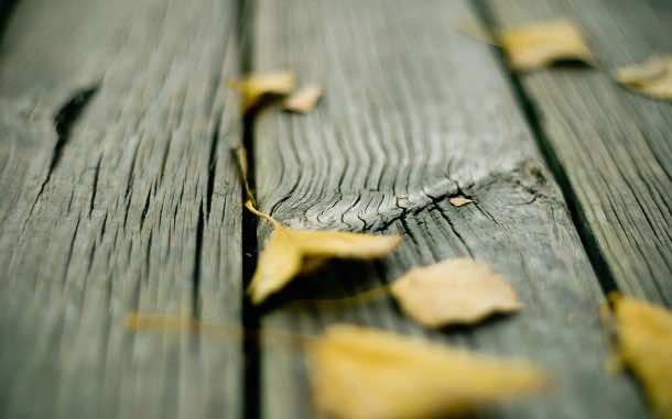 wood wallpaper 48