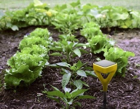 7. A solar-powered gardening system