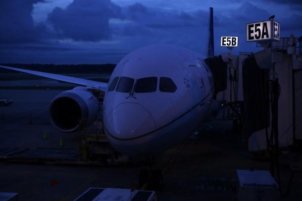 Boeing Airliner Flies on Green Diesel2