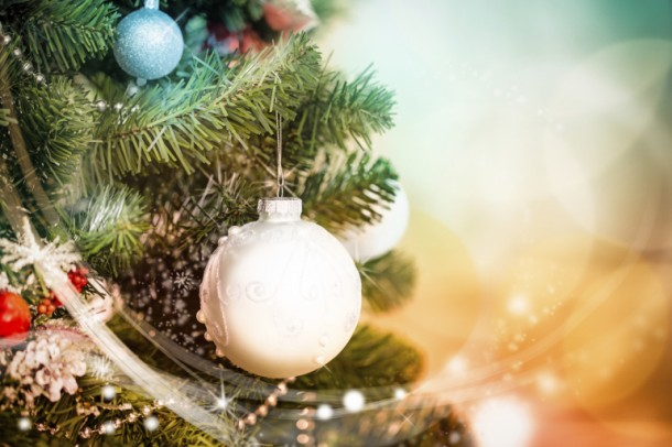 Here's How to Prolong The Christmas Tree's Life 4