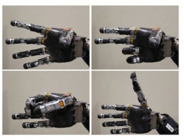 Mind Controlled Robotic Hand – 10D