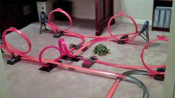 Mother of All Hot Wheels Tracks