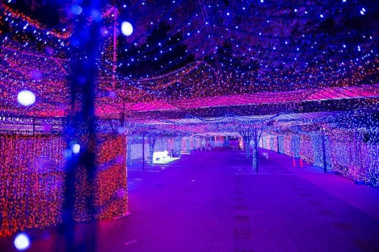 World's Largest Christmas Lights Display6