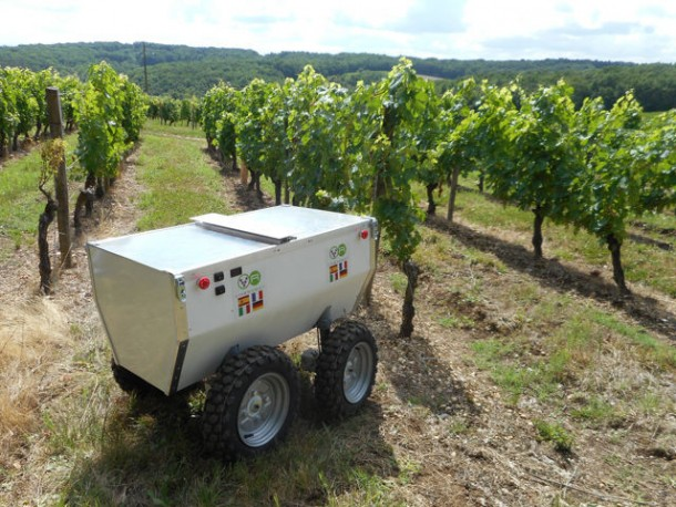 VineRobot – The Future is Here