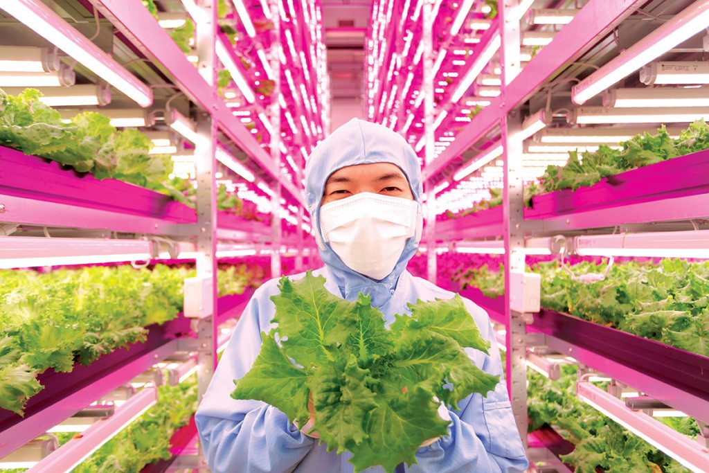 World's Largest Indoor Farm – Producing 100 Times More5