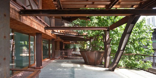 25 Verde Treehouse – Architecture at Its Best!4