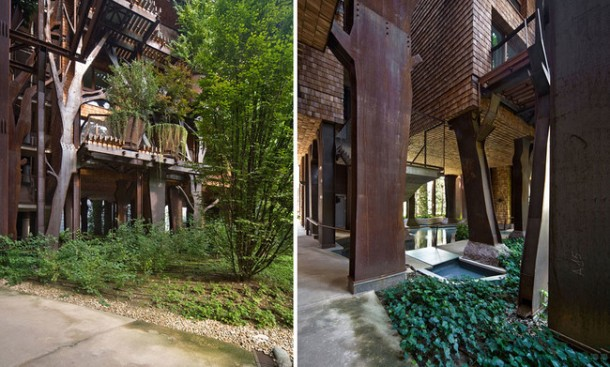 25 Verde Treehouse – Architecture at Its Best!9