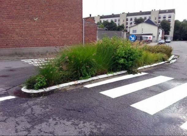 22 Road Construction Fails 21