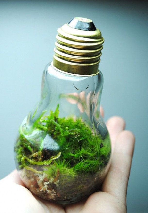Fancy Uses of Old Lightbulbs 4