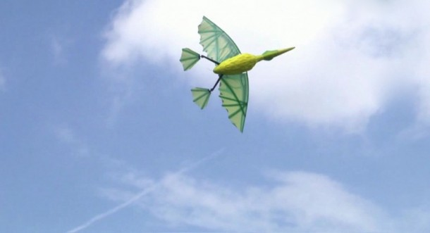 RC Flying Pterodactyl – The Horror and Fun 3