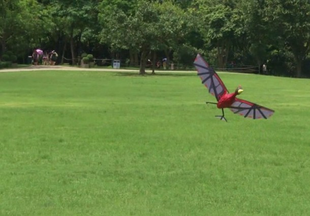 RC Flying Pterodactyl – The Horror and Fun 5