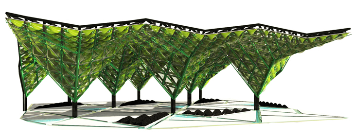 This Algae Canopy Can Generate 4 Hectare Forest Worth of Oxygen