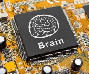 Brain-like Circuit Mimics Human Brain 3