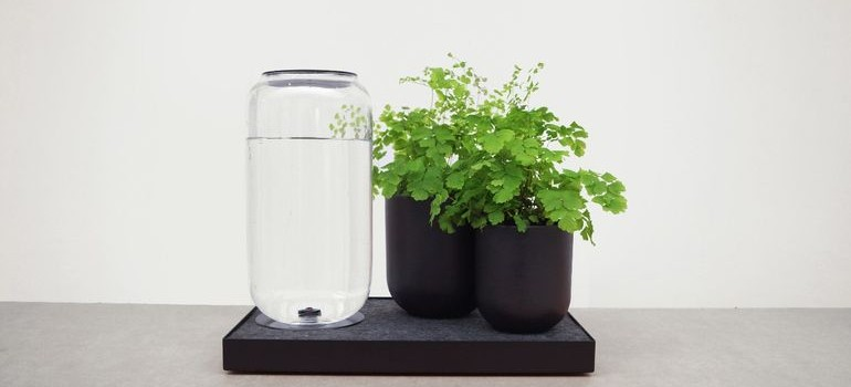 Tableau self-watering3
