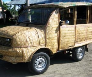 Bamboo taxi coconut diesel