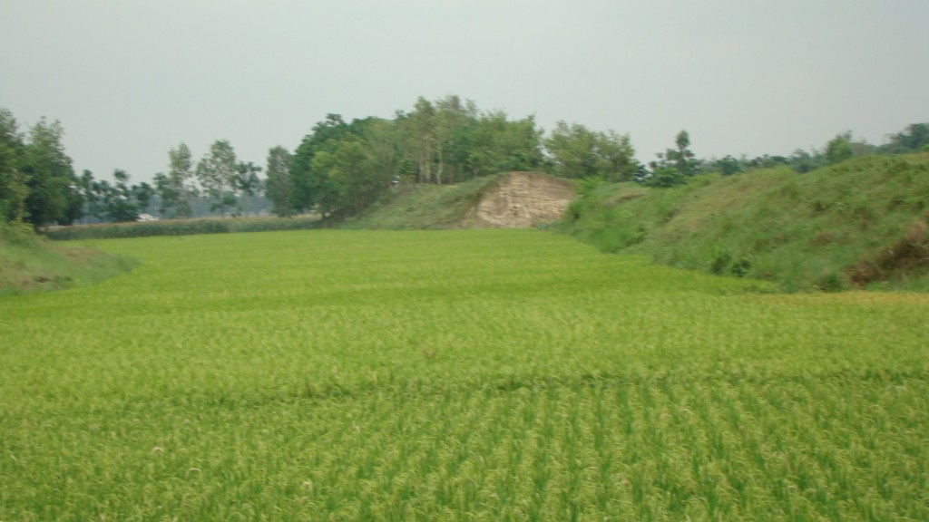 Bangladesh Wallpaper 2
