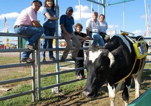 cow methane backpack3