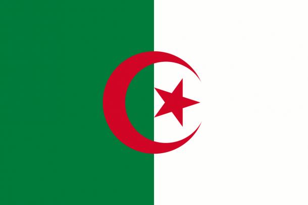 Algeria Flag  (1)