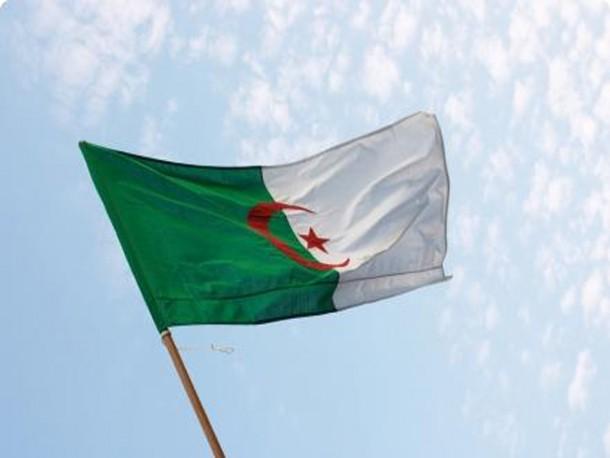 Algeria Flag  (11)