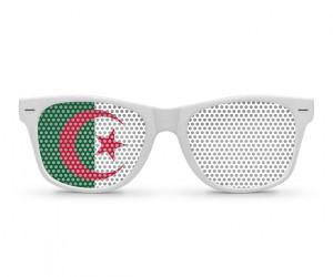 Algeria Flag  (12)