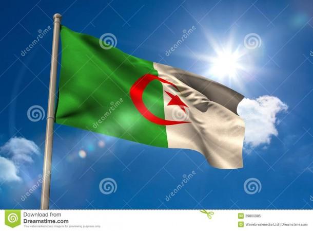 Algeria Flag  (15)