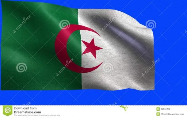 Algeria Flag  (19)