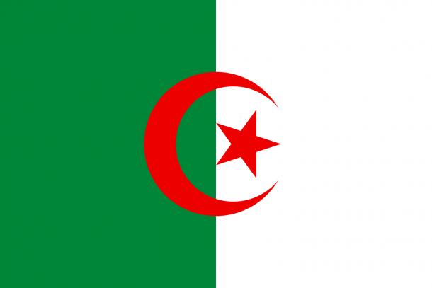 Algeria Flag  (2)