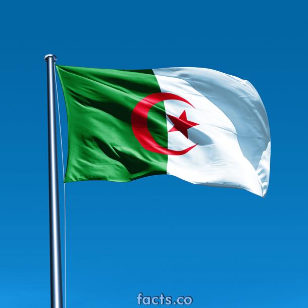 Algeria Flag  (4)