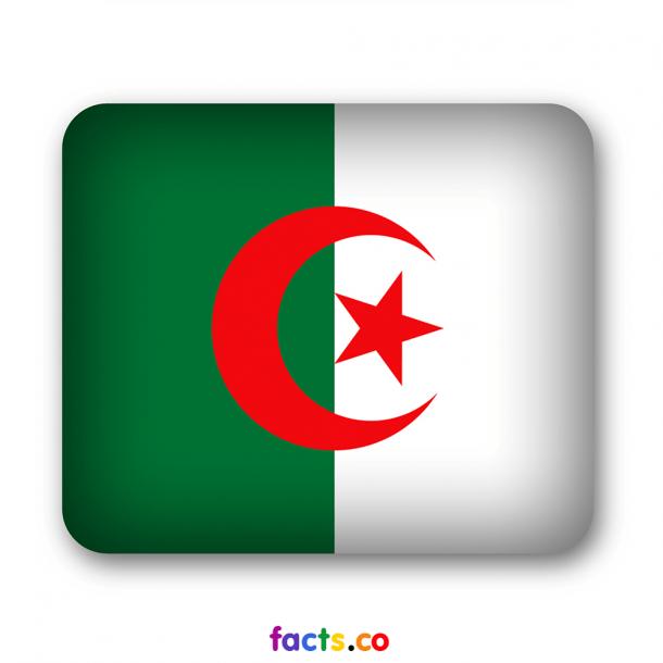 Algeria Flag  (6)
