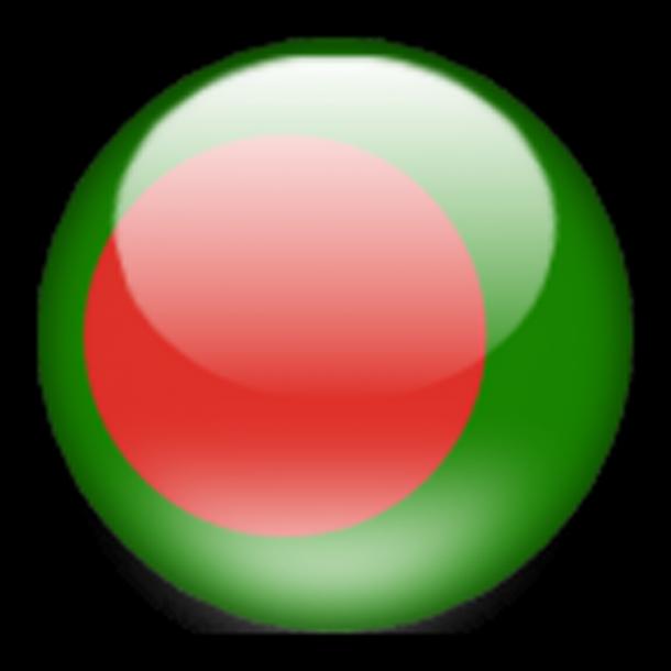 Bangladesh Flag  (2)